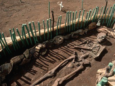 Skeletal remains being dug up at La Isabela, the first European settlement in the New World, founded by Christopher Columbus is 1493.