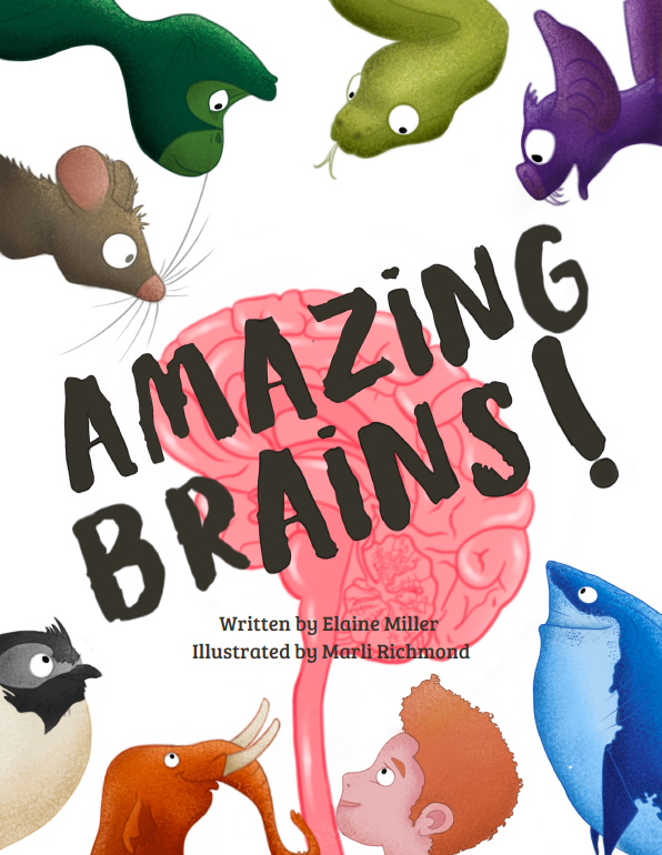 A book cover with Amazing Brains in brown over a pink brain and colorful animals.