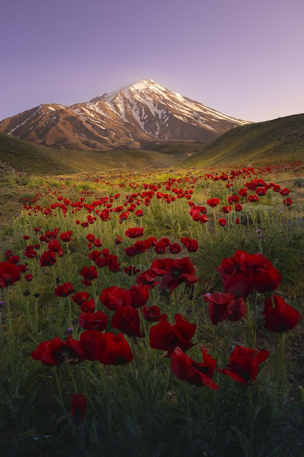 Damavand Peak is the highest peak in Iran