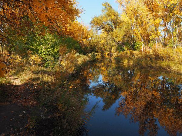 Autumn on Bear Creek thumbnail