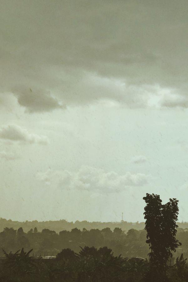 Rainy landscape Africa thumbnail