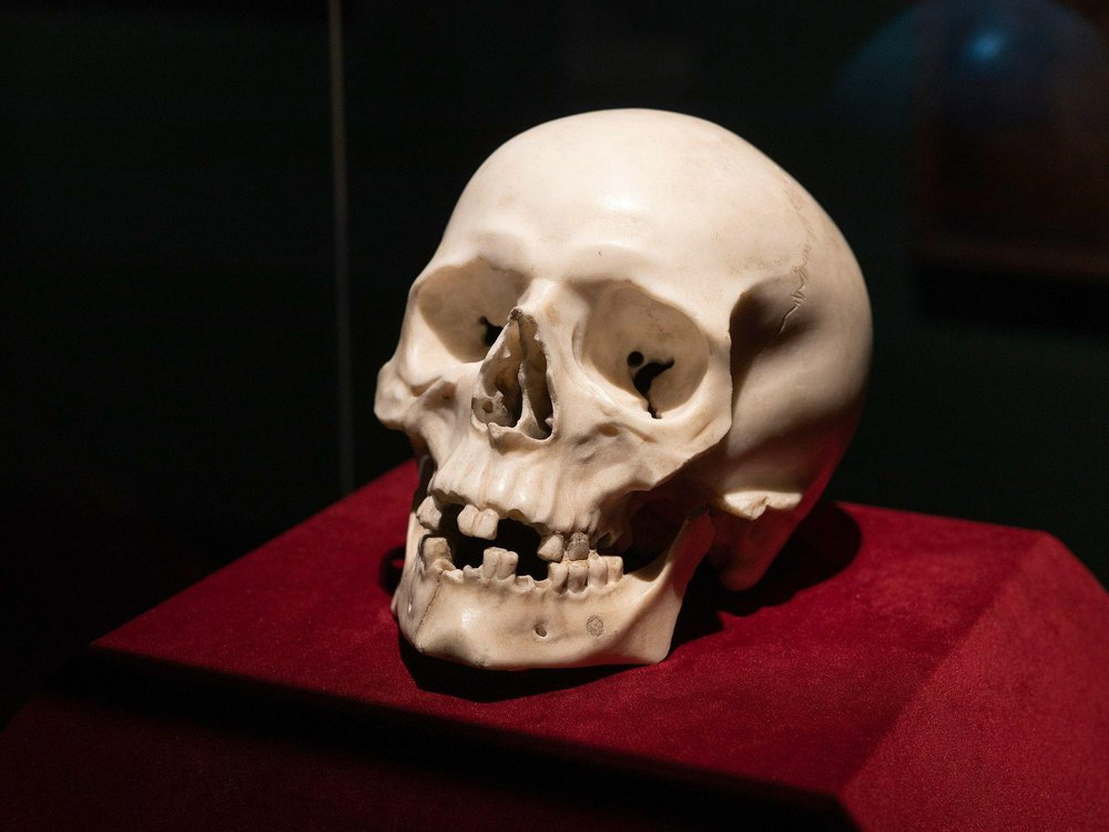 A marble skull sculpted by Bernini