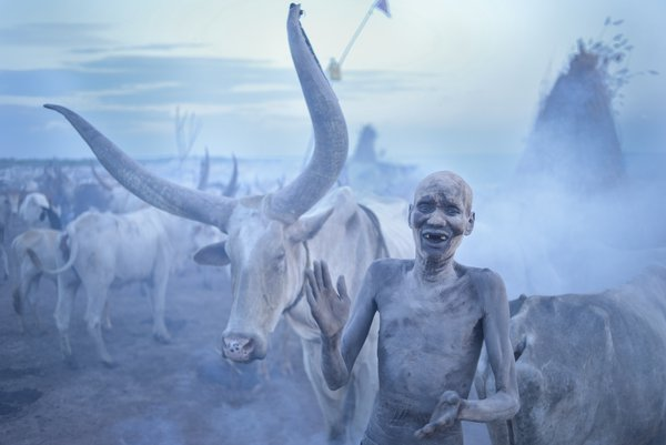 A Dinka Sings to His Cattle thumbnail
