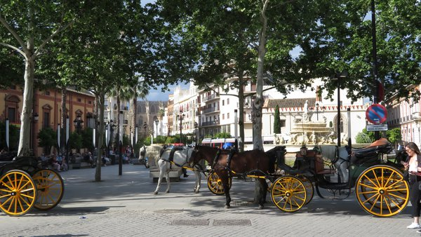 Sevilla – Architecture and coaches thumbnail