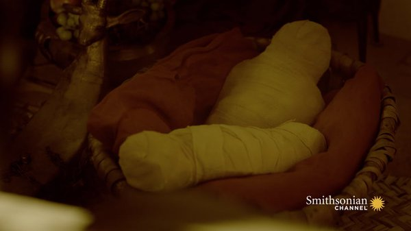 Preview thumbnail for Why Were Mummified Babies Found in Tutankhamun's Tomb?