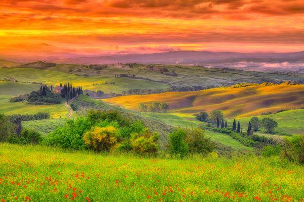 A Tuscany Dawn thumbnail