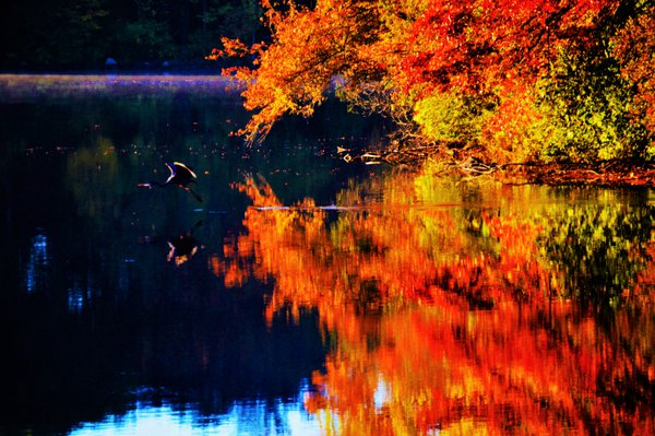 Reflections of autumn on Sunset Lake. thumbnail