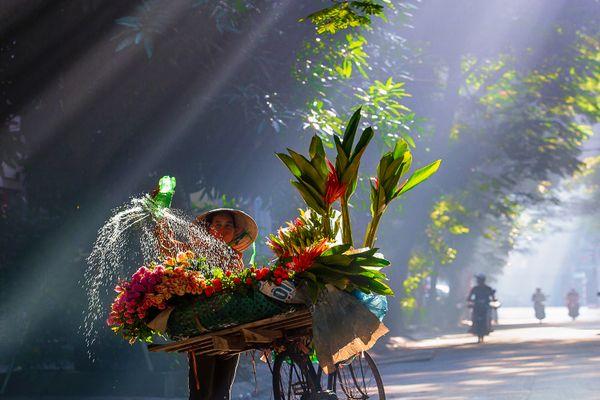 Flower street vendor in Hanoi thumbnail