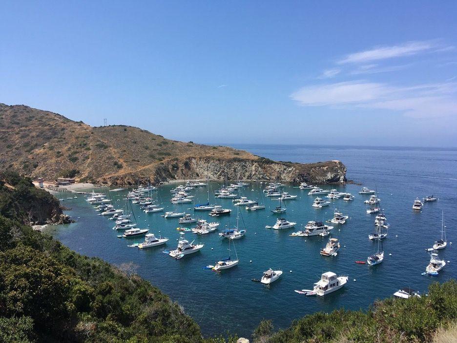 A photo of the coast of Santa Catalina Island on California's southern coast