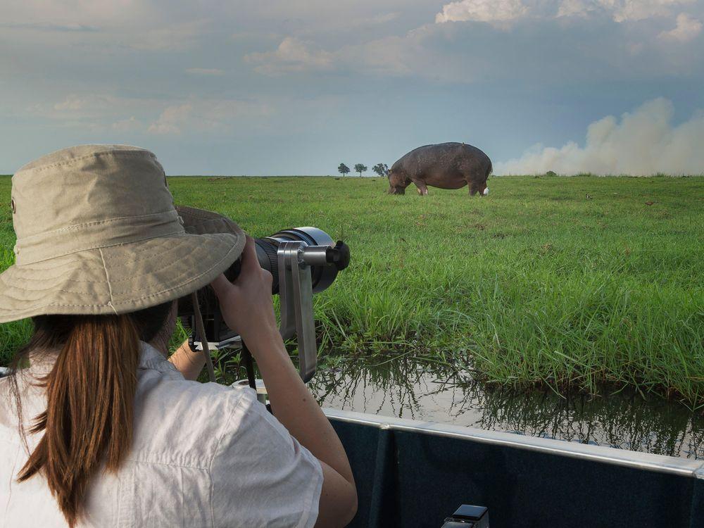 tourist in Botswana