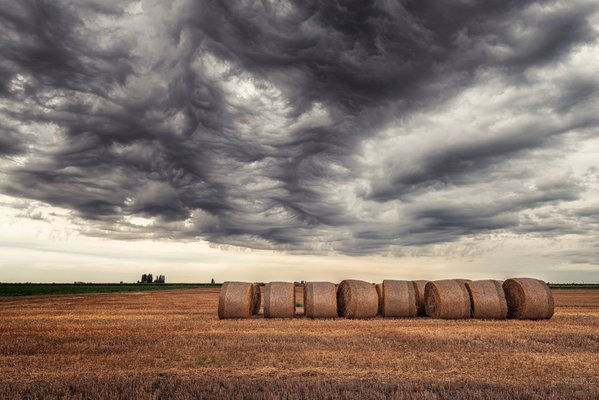 Hay bales in the plain of northern Italy, under a leaden sky thumbnail