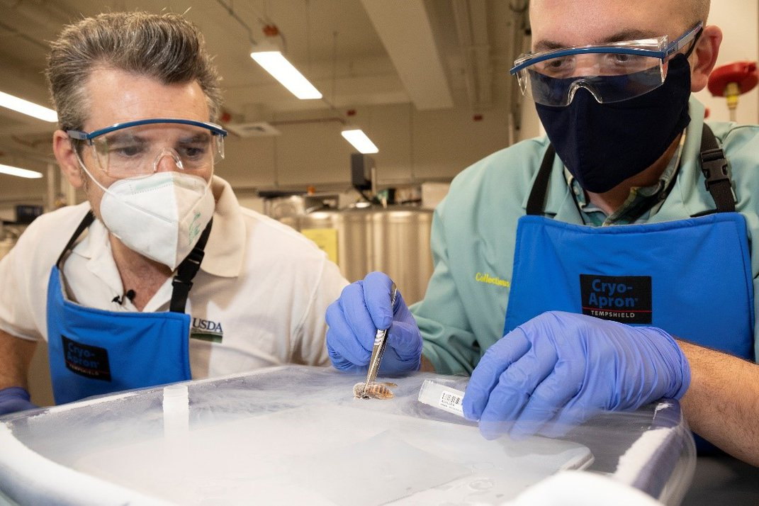 Two people in protective equipment in a lab.