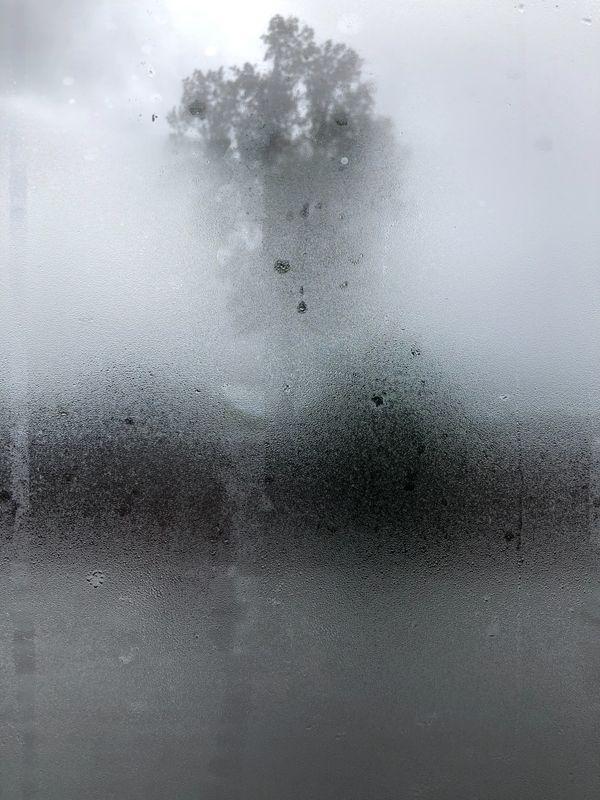 Rainy Day thumbnail