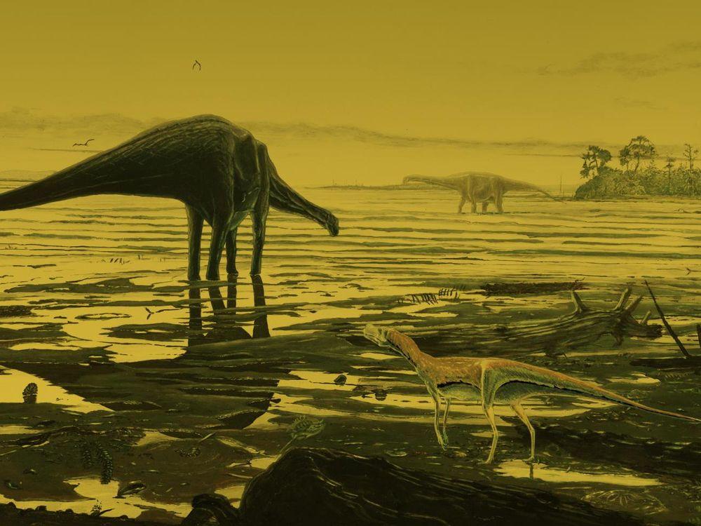 scottish sauropod