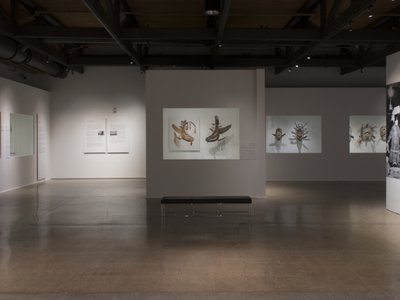 Gallery view of the Heard Museum exhibition,