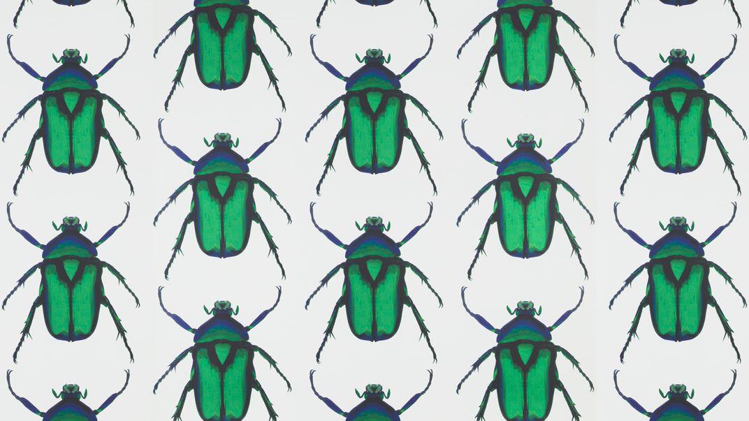 Bugs background