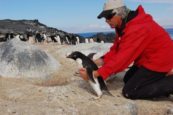 Can Birds Survive Climate Change?