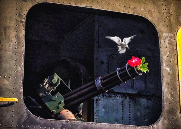 NO WAR thumbnail