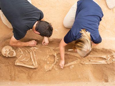 Excavation of the Philistine cemetery at Ashkelon.