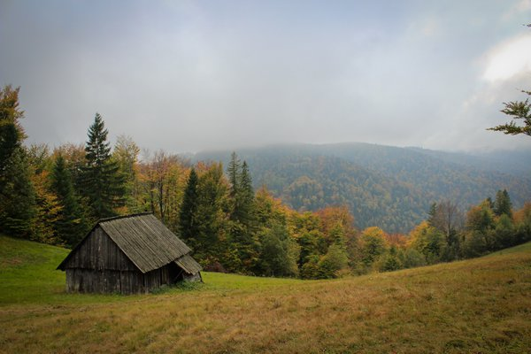 The Mountain Lodge thumbnail