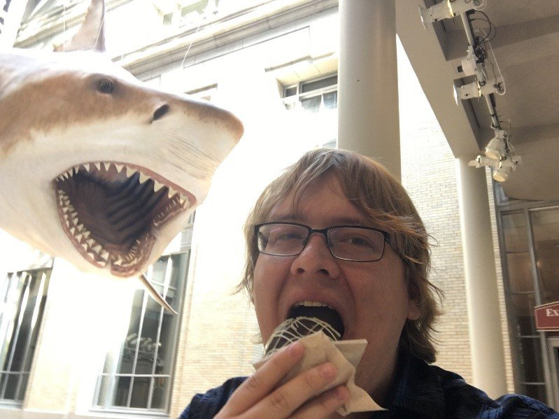 A visitor eats a pastry while taking a selfie in front of the 52-foot megalodon model on display in the Ocean Terrace Café at the Smithsonian's National Museum of Natural History.