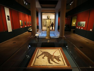 """Installation view of the British Museum's """"Life and Death in Pompeii and Herculaneum"""" exhibition"""