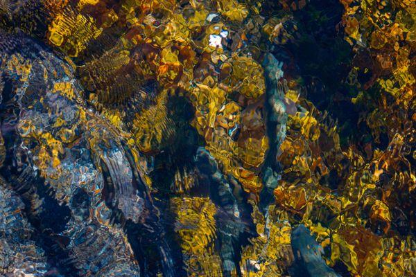 """Freshwater Fall"" thumbnail"
