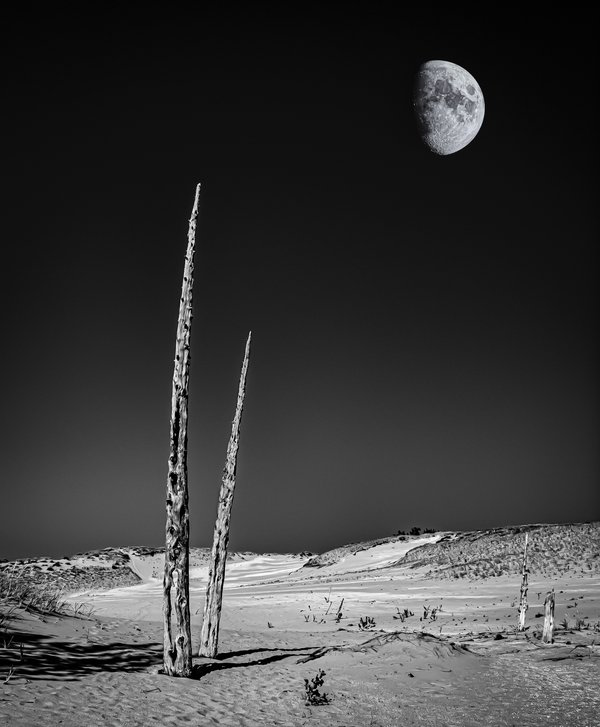 Moon Over Dune thumbnail