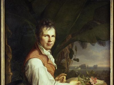 Friedrich Georg Weitsch, Portrait of