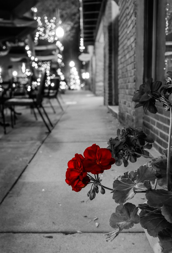 Old Town Flowers thumbnail