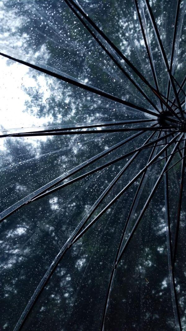 Raindrops on an umbrella thumbnail