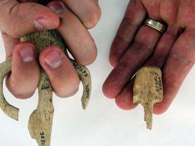 Atlatl grips from the Par-Tee site in Oregon