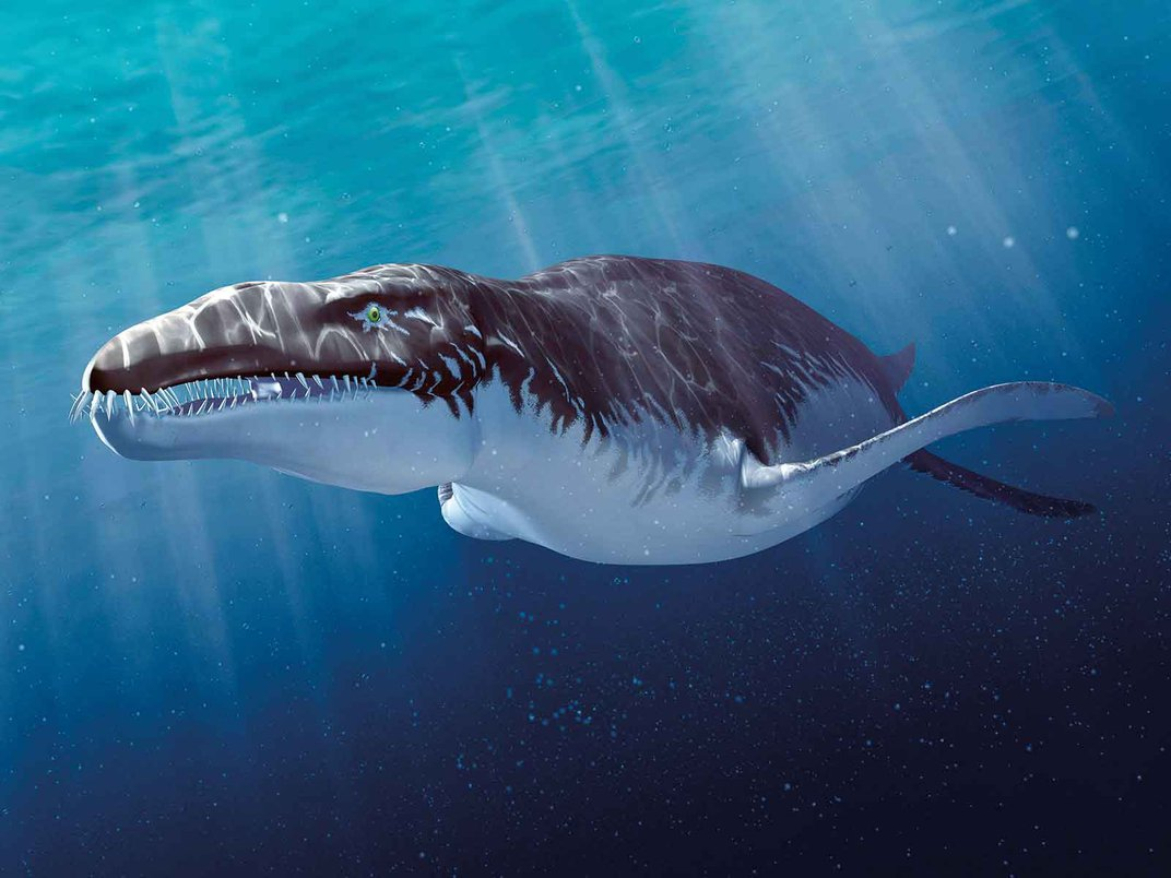 Ten Exquisite Creatures That Once Roamed the Earth