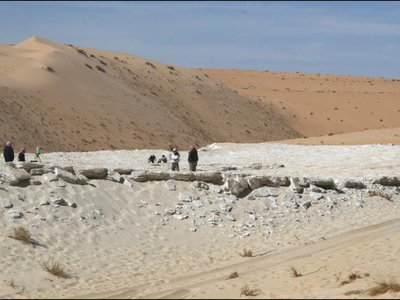 Researchers identified seven prehistoric human footprints at Alathar, a dried-up lake bed in Saudi Arabia.