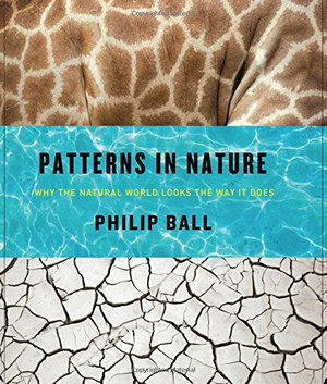 Preview thumbnail for Patterns in Nature: Why the Natural World Looks the Way It Does