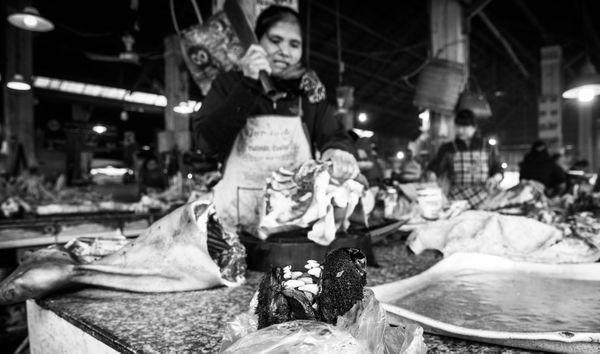 Dog Market in Vietnam thumbnail