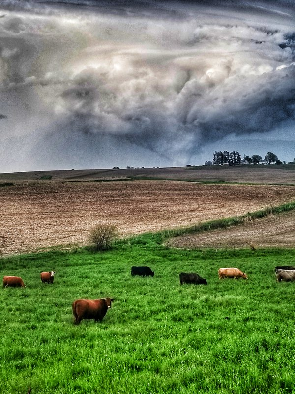 Midwest EF-1 Tornado  thumbnail