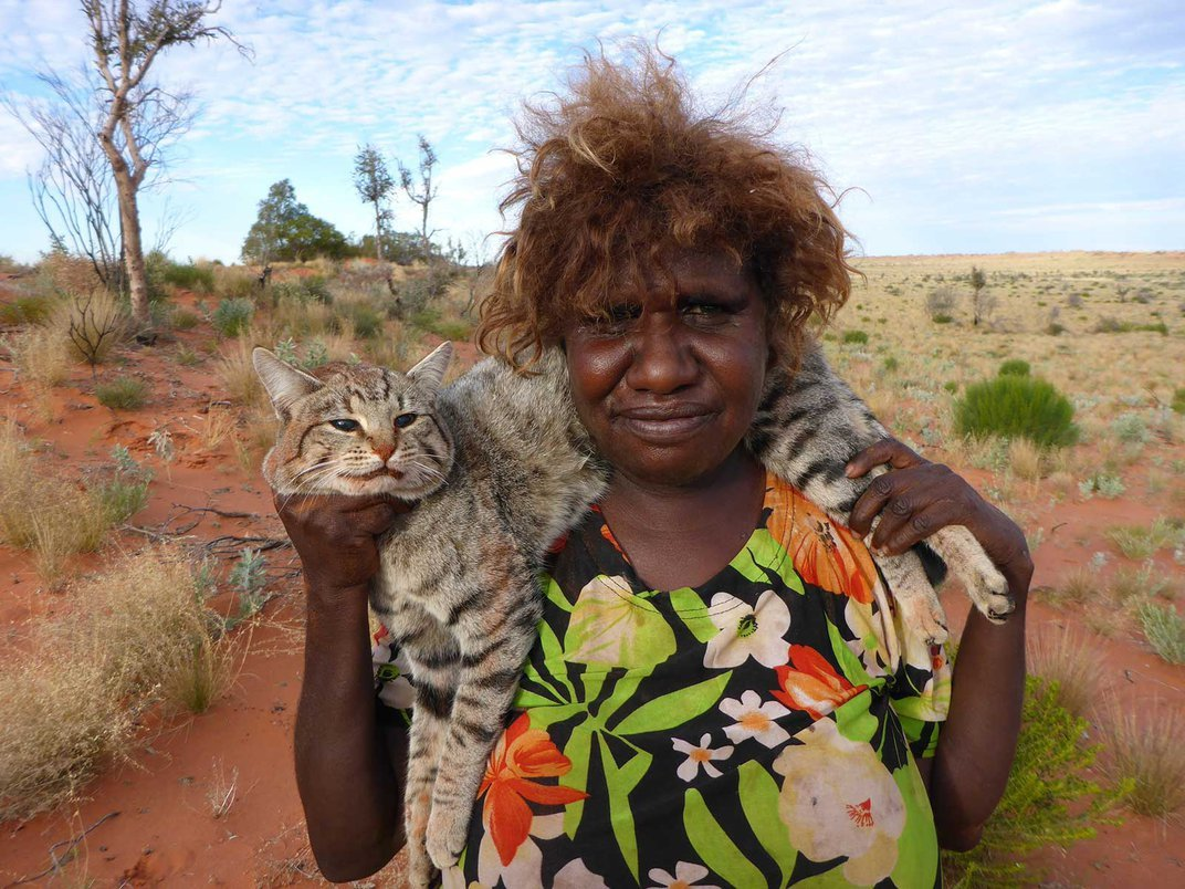 Australia's Cats Kill Two Billion Animals Annually. Here's How the Government Is Responding to the Crisis