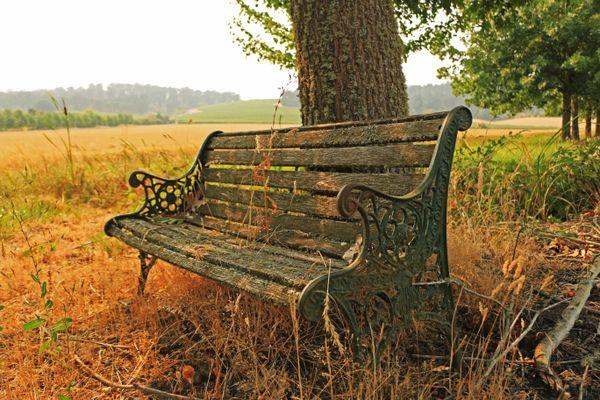 Forgotten Bench thumbnail