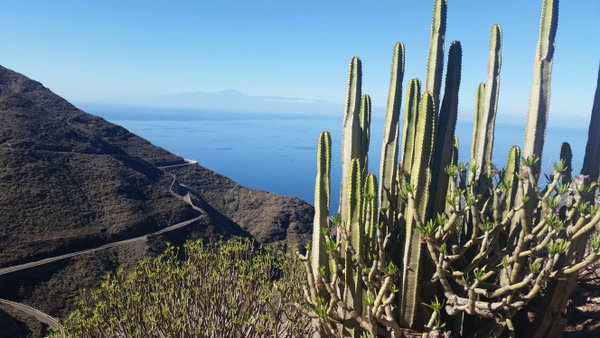 Breathtaking view while on Canary Island roadtrip thumbnail