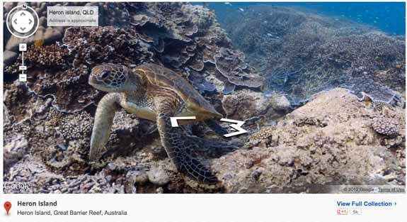 Google Brings Street View to the Great Barrier Reef