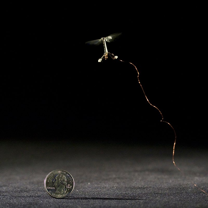 RoboBees Can Fly and Swim. What's Next? Laser Vision