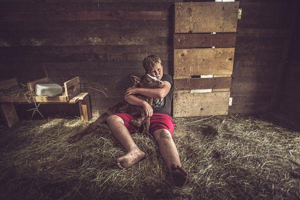 Farm Boy thumbnail