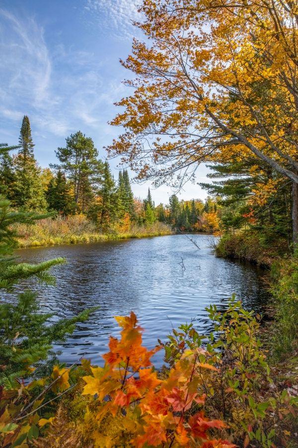 Autumn on the Shelldrake thumbnail