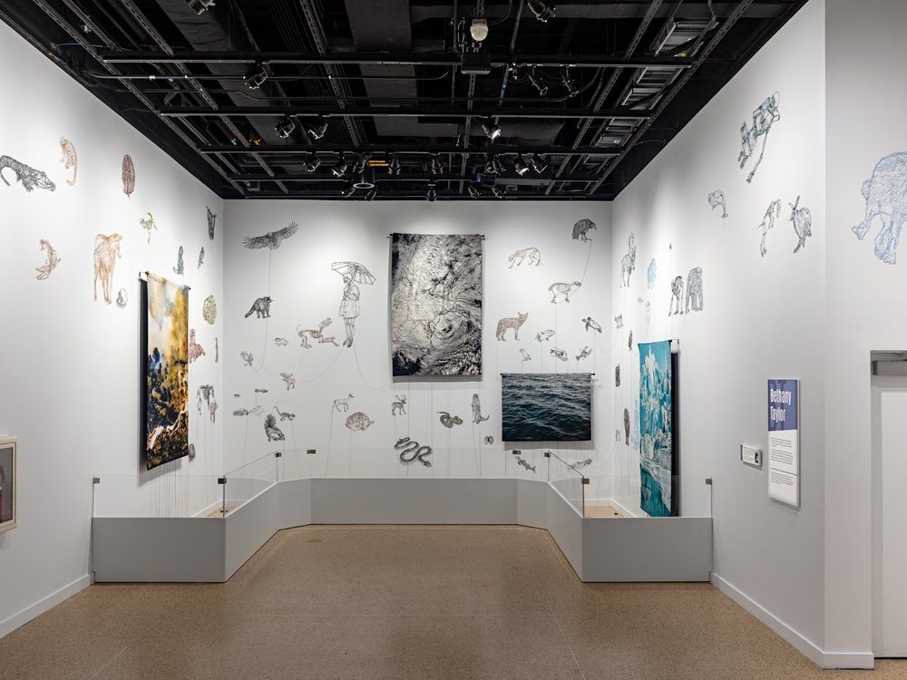 """""""Unsettled Nature"""" features artworks by Bethany Taylor and six other contemporary artists that show how humans have changed nature.  (James Di Loreto, Smithsonian)"""