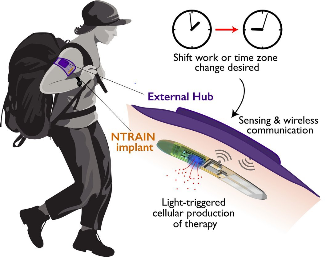 This Implant Could One Day Control Your Sleep and Wake Cycles