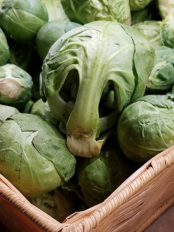a very worried brussel sprout I found at a market in Oregon thumbnail