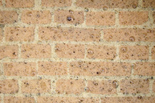 Building Better Bricks by Brewing Beer