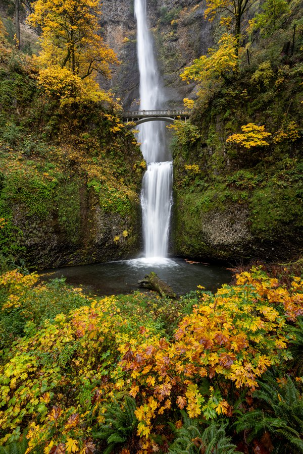 Multnomah Falls in Fall thumbnail