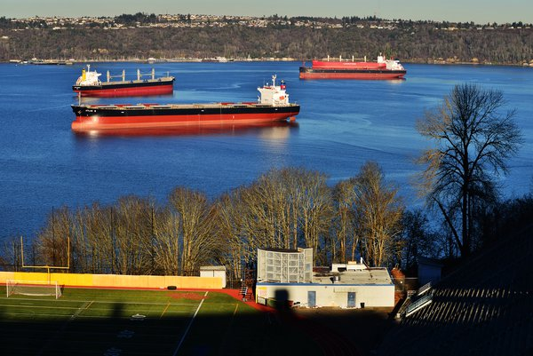 Huge bulk ships waiting for loading grains in Commencement Bay. thumbnail